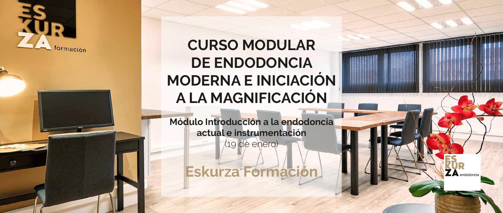 CURSO MODULAR DE ENDODONCIA MODERNA E INICIACIÓN A LA MAGNIFICACIÓN DE ESKURZA FORMACIÓN